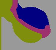alliances-for-global-sustainability-logo